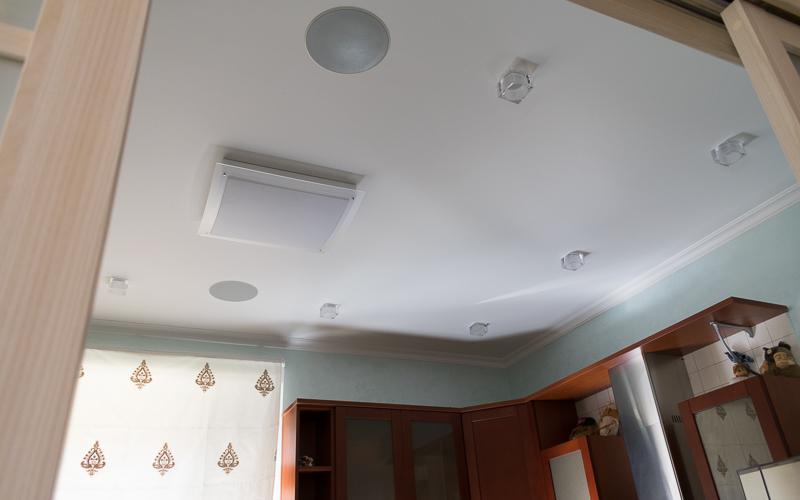 Потолочные акустические системы на кухне