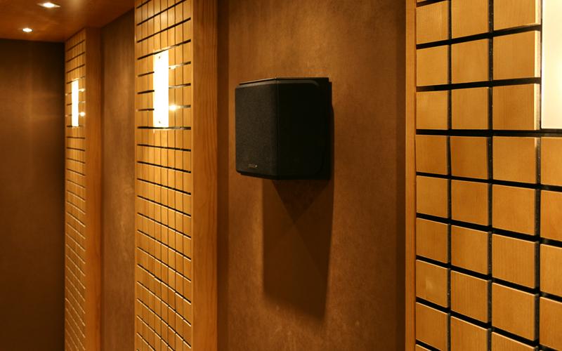Настенные акустические системы Monitor Audio RX-FX