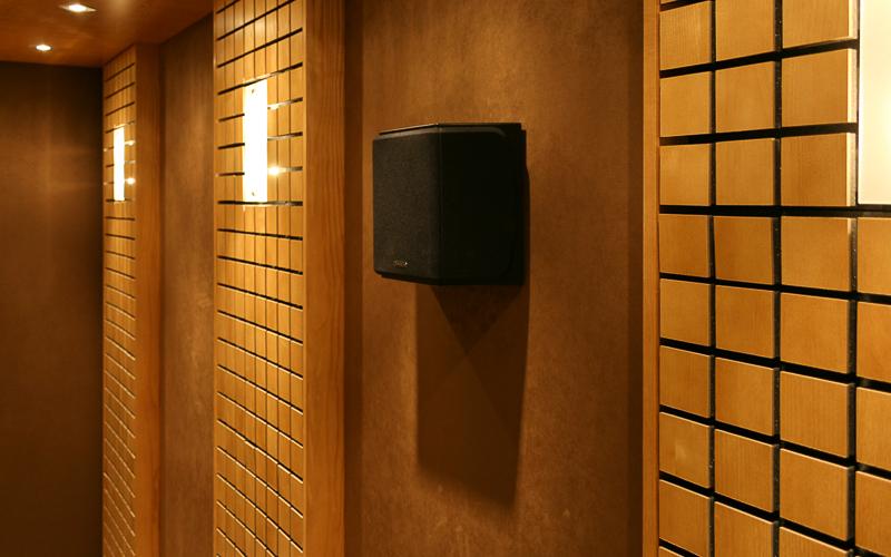 Настенная акустическая система Monitor Audio RX-FX